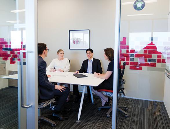 Deloitte New Zealand Careers - Risk Advisory
